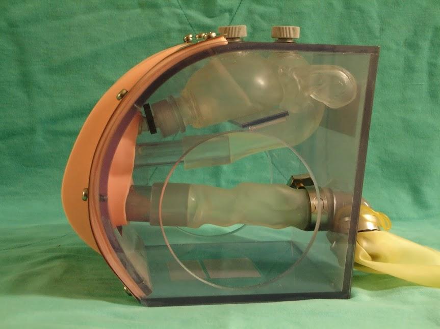透視式導尿模型-女性
